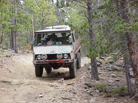 Per's Pinzgauer in the woods.